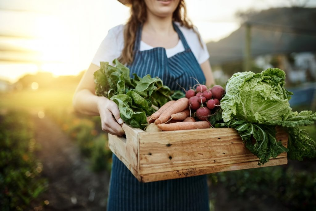 Join a Community Supported Agriculture Program to Save on Food